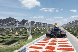 Huawei saulės elektrinė